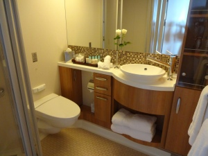 Susan McDaniel Travel Celebrity Silhouette bathroom